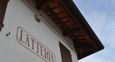 Turrida, da latteria a primo caseificio biologico in Friuli