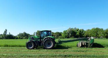 I vantaggi dell'utilizzo di olio vegetale puro